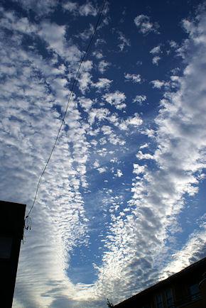 111001いわし雲1