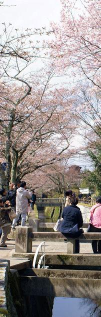 120407tetugakunomichi