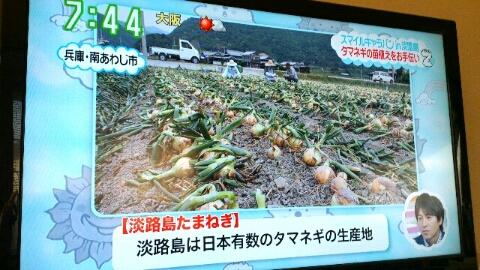 fc2blog_201211030105447f6.jpeg