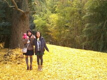 iphone_20120106155725.jpg