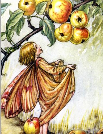 野生リンゴの妖精_葉書き-r2fbf56414a0d45489fe10d24cb80b2bc_vgbaq_8byvr_512