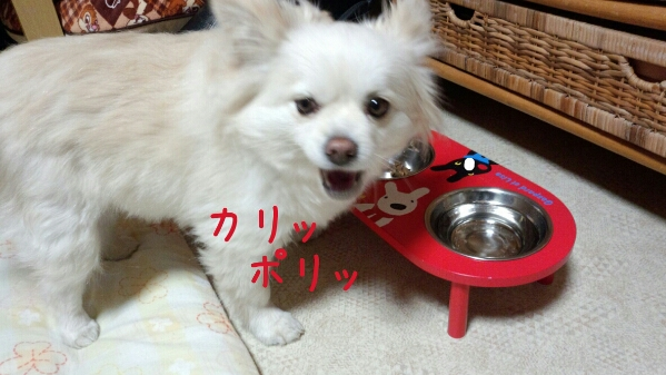fc2_2013-03-09_08-21-52-208.jpg