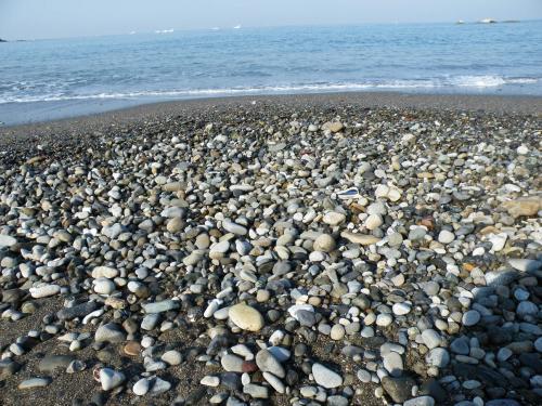 2010_0501ビーチコーミング0017A