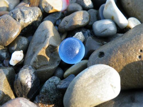 2010_0501ビーチコーミング0001A