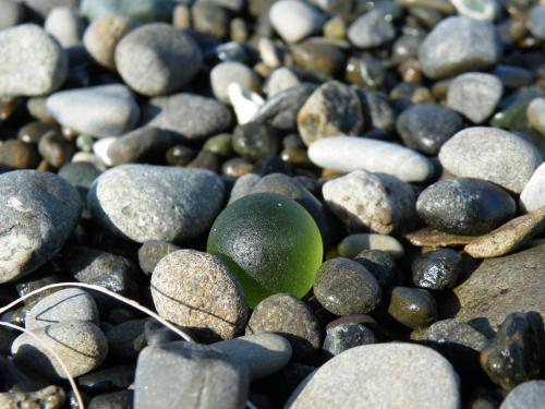 2010_0501ビーチコーミング0034A