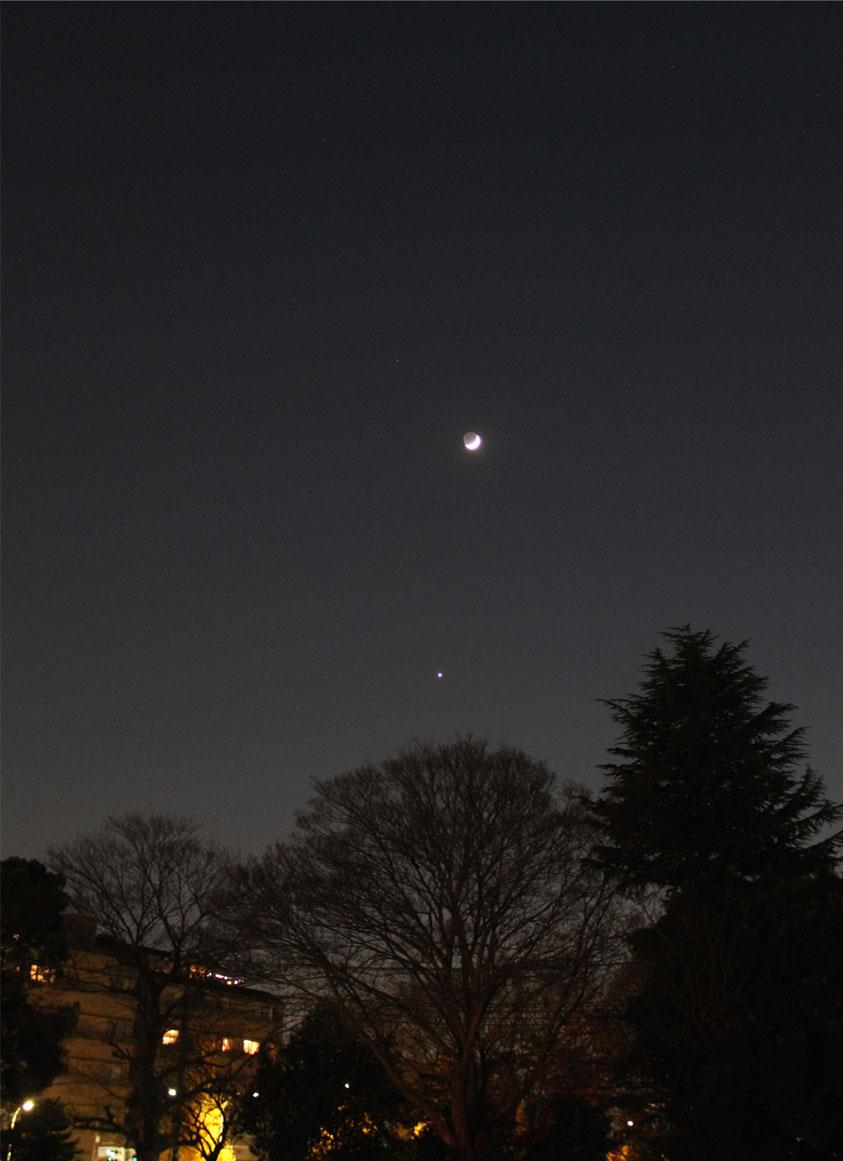 月と金星(1)