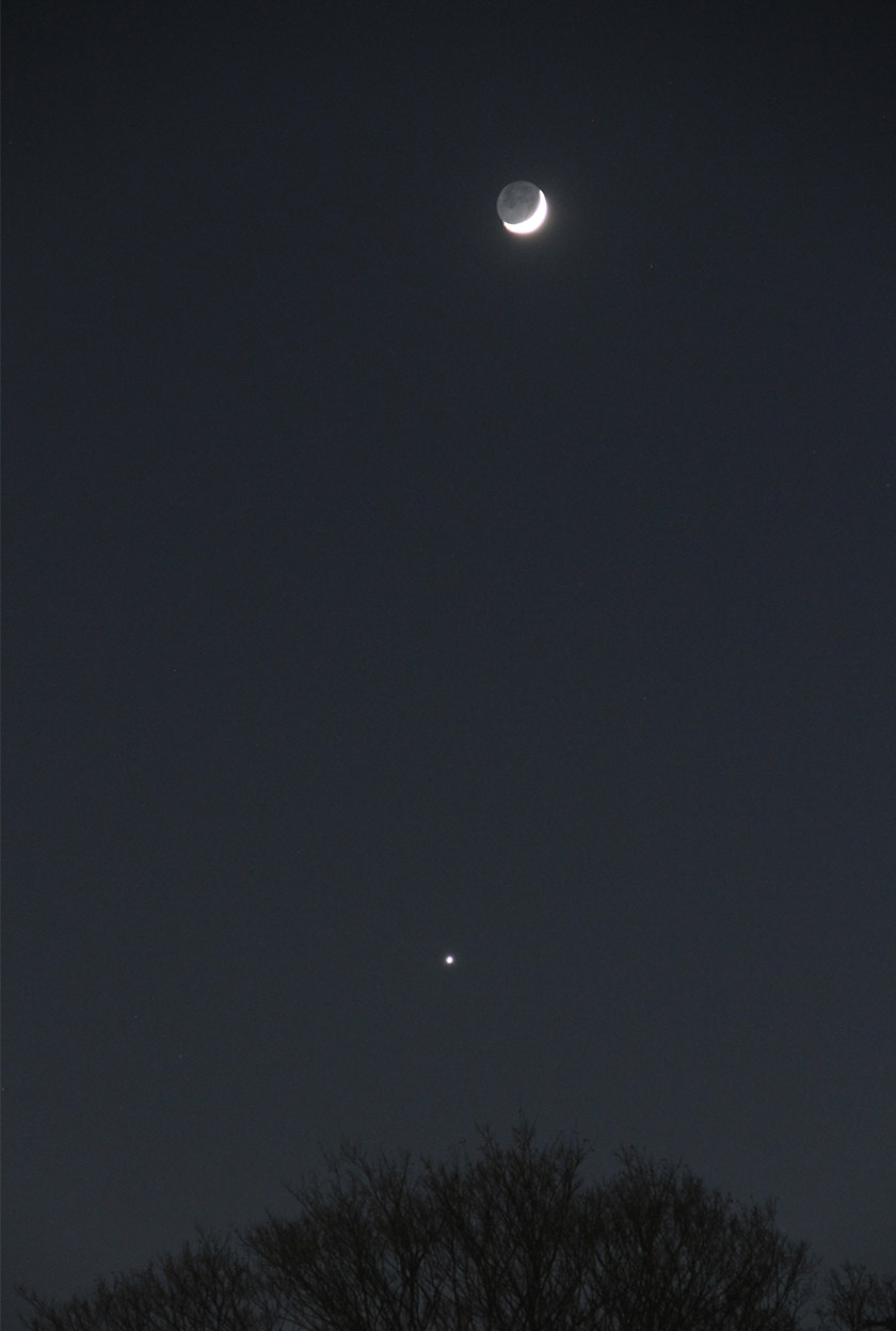 月と金星(2)