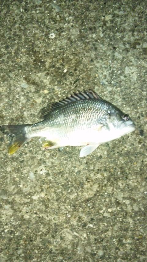 kibire06062010