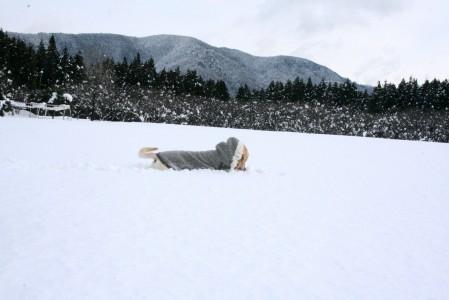 雪のお風呂~