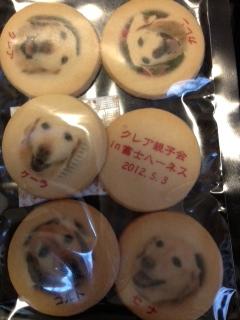 クッキーだぁ~♪