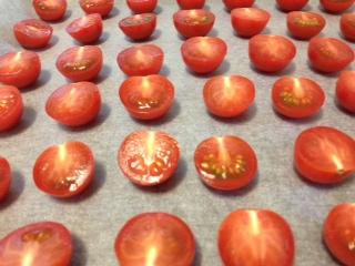 トマトちゃん整列!