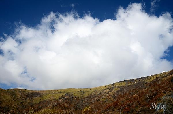 秋の霧ヶ峰