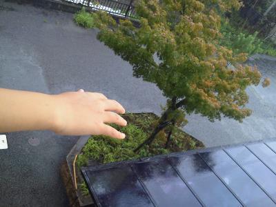 雨、娘の手