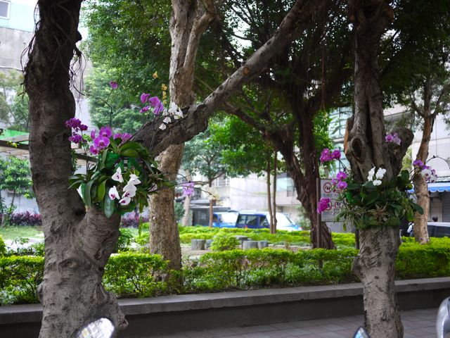 台北の街角