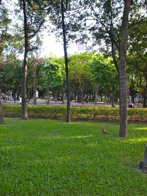 二二八公園2