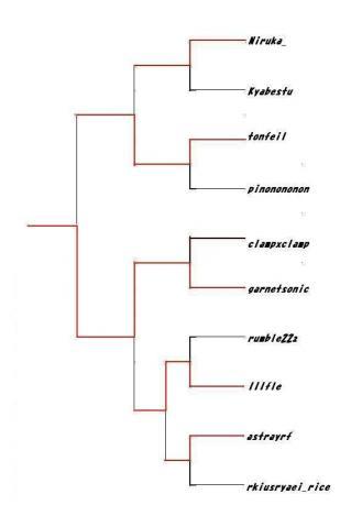 トーナメント11