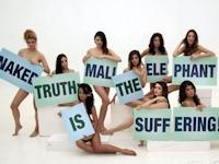 象の「Mali」を助けて! フィリピンのトップモデルたちがヌードで懇願