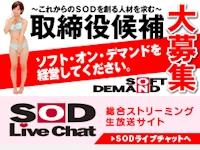 SOD(ソフト・オン・デマンド)で取締役候補を大募集中らしい