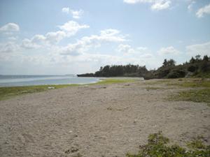 勝連の海岸02