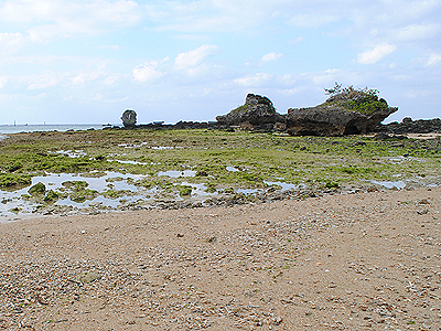 恩納村の海岸
