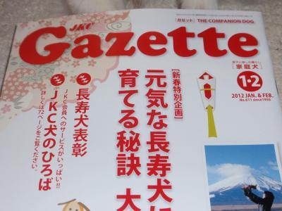 016_convert_20120125024410.jpg