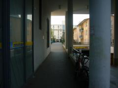P1300798.jpg