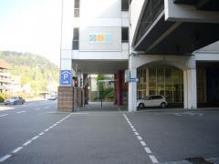 P1310598.jpg