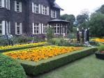 20111103旧古河庭園の植え込み