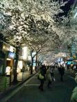 日本橋祭り2012年4月6日その1