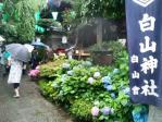 白山神社その2H24年6月