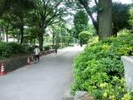 小石川公園その1