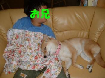 2003hirune_convert_.jpg