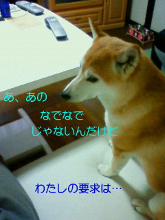 201006230730001.jpg