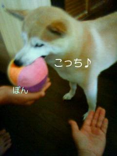 201008111100003.jpg