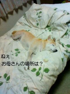 画像 052
