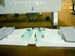 NEC_0085_20110120100414.jpg