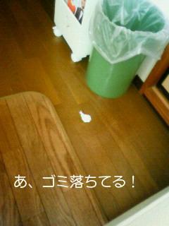 NEC_0085_20110214144254.jpg