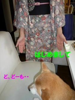 kimono2_convert.jpg