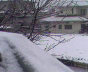 H22の39雪
