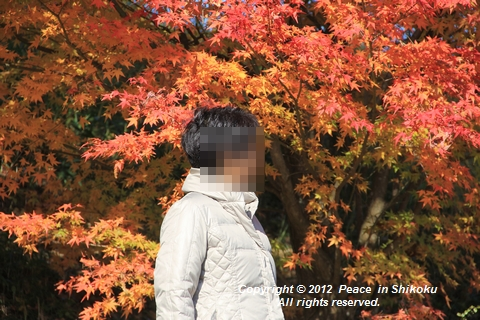 wwwwIMG_7603.jpg