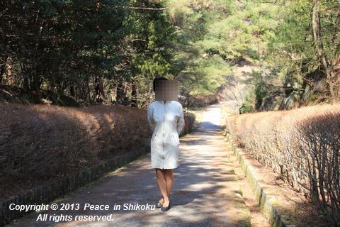 yako4221.jpg