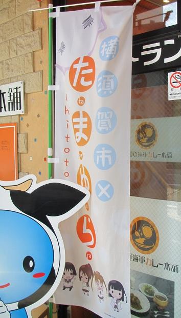 たまゆらin横須賀 (1)