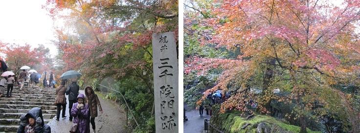 2011なのパ&京都 (14)