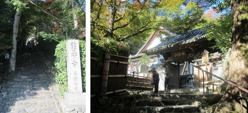 2011なのパ&京都 (13)
