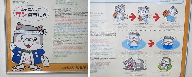 2011秋田 (6)