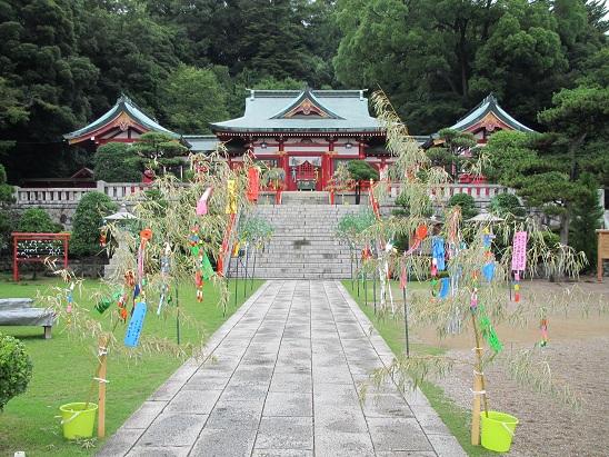 201207足利ひめたま (8)