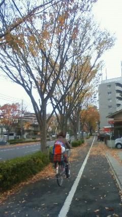 201211241210000.jpg