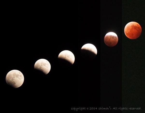 20141008皆既月食1