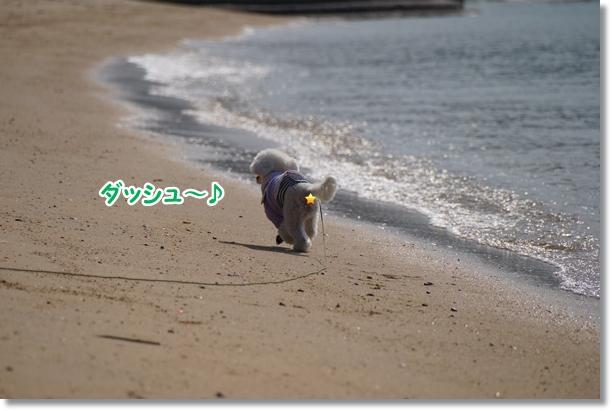 海でダッシュ♪1