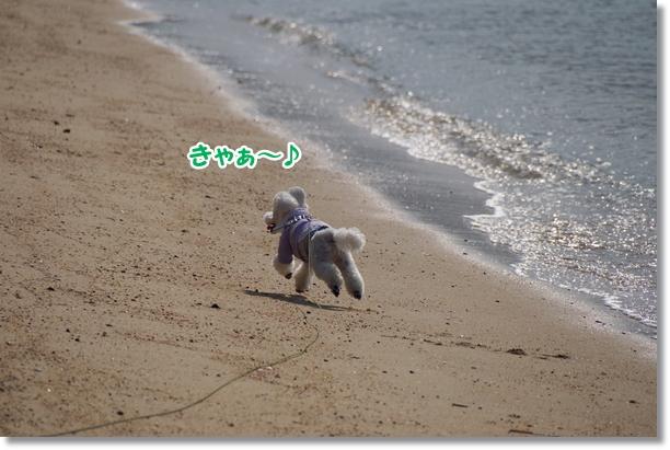 海でダッシュ♪2